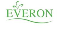 Dịch vụ SEO thông minh cho công ty Everon
